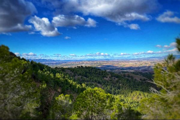 Bob's Trail's February