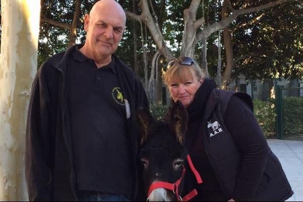 Andrea's Animal Charity