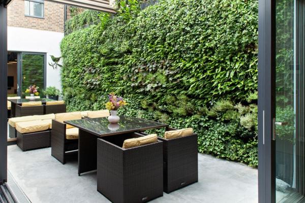 Herb Walls: A Fresh Take on the Living Wall