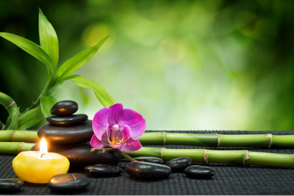 Feng Shui Your Home: 8 Ways To Attract Positive Energy