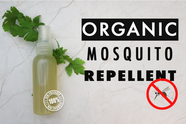 How to Make Natural Mosquito Repellents post image on the-journal.es