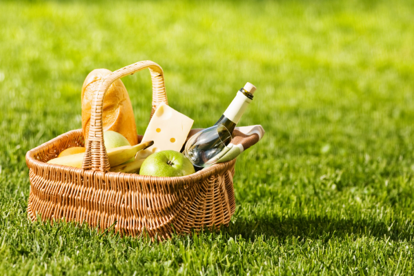 National Picnic Month 2021 July 1 - July 30